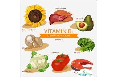 Những điều cần biết về Vitamin B5